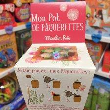 Pot Graines Paquerettes Moulin Roty