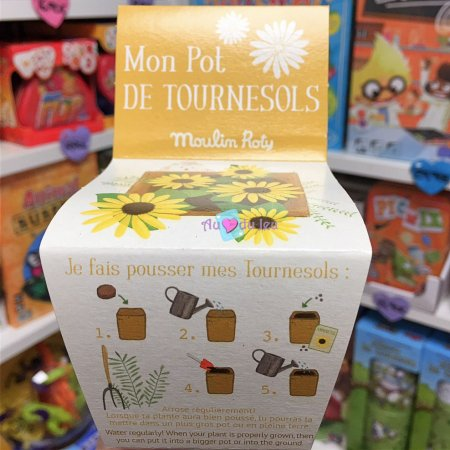 Pot Graines Tournesol Moulin Roty