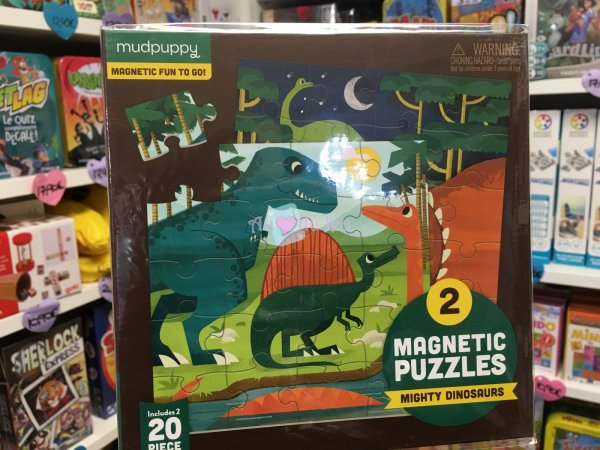 2 Puzzles Magnétiques Dinosaures Mudpuppy