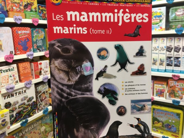 Docu Scolaire - Mammiferes Marins Editions Lito